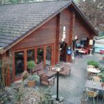 Bospark Dennenrhode brasserie